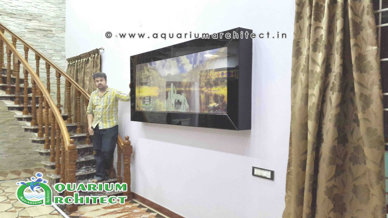 Largest aqaurium in chennai | Plasma aquarium in chennai | Plasma aquarium in india