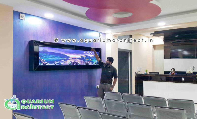 Customised Aquariums in india | Aquarium in chennai | designer aquarium | Plasma Aquarium in chennai